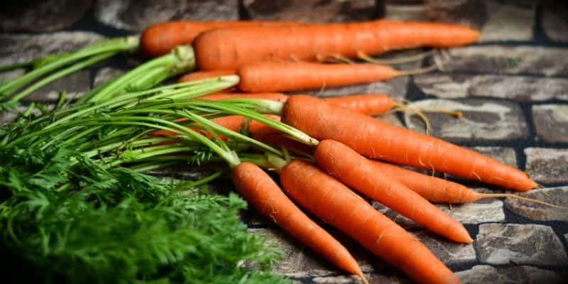can you juice carrot greens