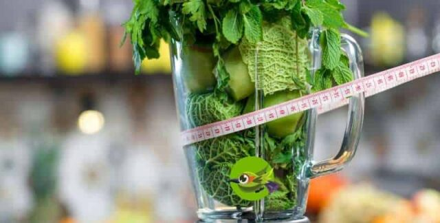 vitamix juicing recipes for weight loss